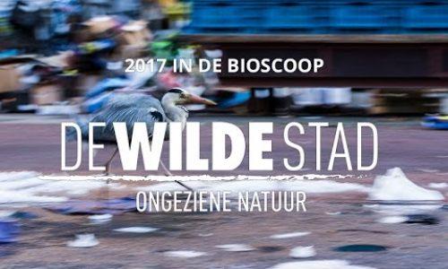 Sneak preview film De Wilde Stad (voor scholen)